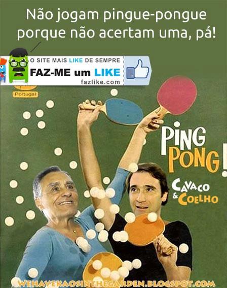 Pingue pongue - Coelho e Cavaco - Humor político