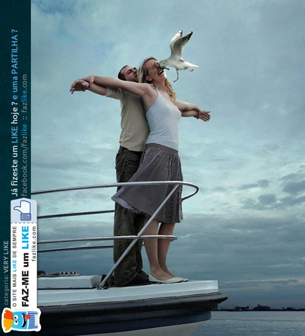 Titanic e a gaivota