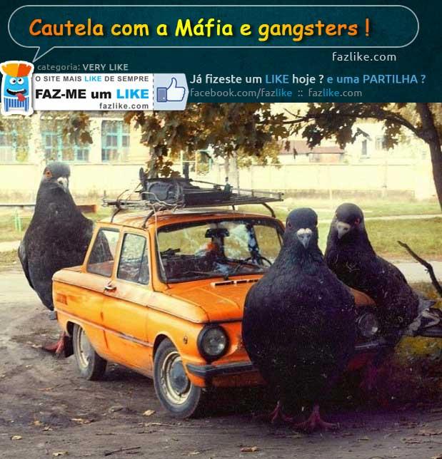 Cuidados a ter com a Máfia e Gangsters
