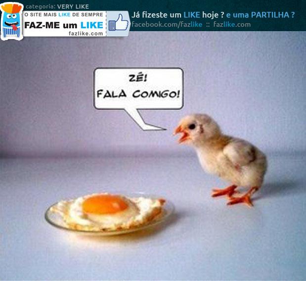 O pinto e o ovo