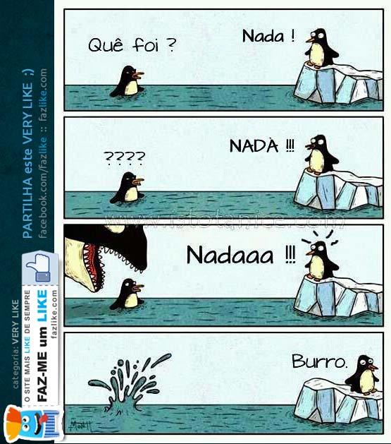 Pinguim não sabe nadar