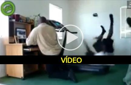 Os melhores falhanços no tapete rolante - video