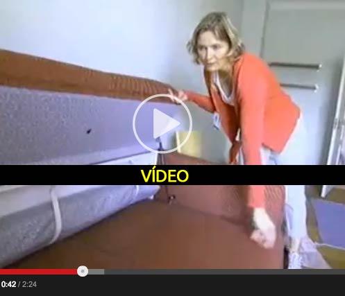 a-vida-humilde-dos-deputados-da-suecia---video